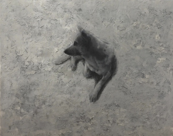 """The Dog """"Bưởi"""" – 2018"""